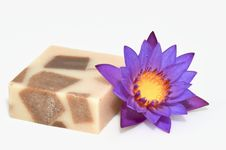 Free Soap And Purple Waterlily Stock Photos - 21102603