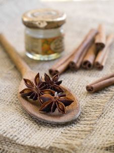 Free Spices Royalty Free Stock Photos - 21103028