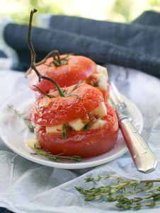 Free Stuffed Tomatoes Stock Photo - 21103350
