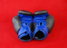 Free Gloves Stock Photo - 21103740