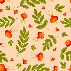 Free Rose Hip Seamless Beige Pattern. Stock Photos - 21104333