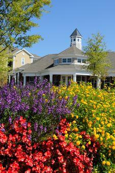 Free Summer Flowers In The Neighborhood Stock Image - 21106121