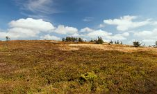 Panorama Of European Countryside Stock Photography