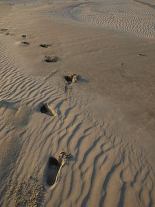 Free Footsteps In The Sand Royalty Free Stock Photos - 21109058