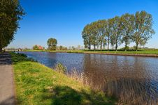Free Row Of Trees Near The Canal Royalty Free Stock Image - 21109606