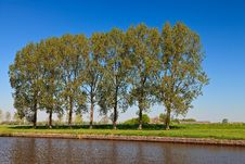 Free Row Of Trees Near The Canal Royalty Free Stock Image - 21109646