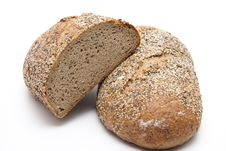 Free More Grain Bread Royalty Free Stock Images - 21110969