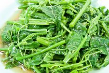 Stir-fried Vegetables(Melientha Suavis Pierre) Royalty Free Stock Image