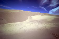 Footprints In Sand Dunes - Great Sand Dunes NP Royalty Free Stock Image
