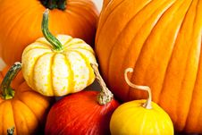 Free Ripe Pumpkin Fruits Isolated Royalty Free Stock Photography - 21113377