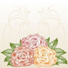 Free Frame With Blossoming Roses. Royalty Free Stock Photo - 21113465