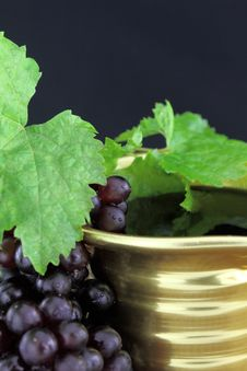 Free Red Wine Stock Images - 21114024
