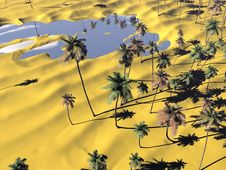 Free Oasis And Palm Trees Royalty Free Stock Photos - 21114978