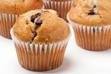Free Chocolate Chip Muffins Royalty Free Stock Photography - 21121597