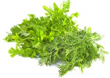 Free Dill And Parsley On A White Background Royalty Free Stock Image - 21122706