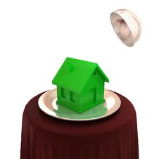 Free Green House On A Silver Dish. Stock Photos - 21123133