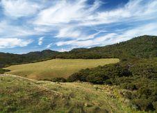 Free Farmland Stock Image - 21126931