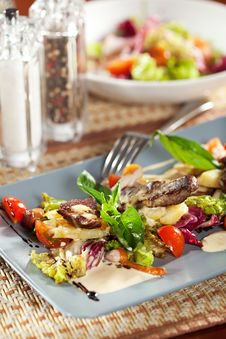 Free Meat Salad Royalty Free Stock Photos - 21128208