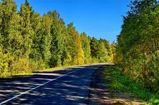 Free Fall Road Through The Forest Royalty Free Stock Photo - 21129465