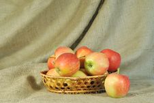 The Red Apples Against Rough Stuff Stock Photo