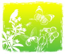 Free Floral Background With Bird And Butterflies Royalty Free Stock Photo - 21129785
