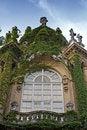 Free Ivy Window Stock Photos - 21130333