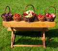 Free Fresh Plums, Strawberryes And Apples Royalty Free Stock Photos - 21132518