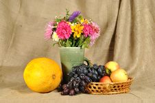 Free The Autumn Flowers And Fruit Royalty Free Stock Photos - 21130258