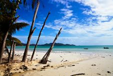 Free View Of White Sandy  Beach In Praslin Stock Photos - 21130303