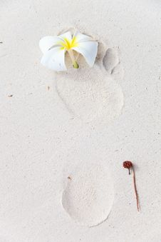 Free Footprint With Frangipani Flower Royalty Free Stock Photos - 21130388