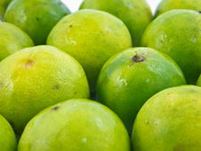 Free Limes Royalty Free Stock Photography - 21131137