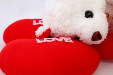 Free Teddy Bear For  Love. Stock Image - 21131481