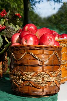 Fresh Red Apples In The Basket Stock Image