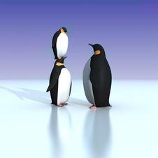 Free Fun Penguins Stock Image - 21133101