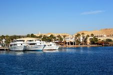 Free Yachts In The Sea Stock Images - 21134464