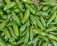 Free Peppers Stock Photo - 21135120