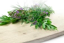 Free Fresh Herbs Royalty Free Stock Images - 21136699