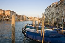 Free Gondolas On Grand Canal In Venice Stock Images - 21138684