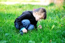 Brunette Child Girl Smelling Daisies In Field Royalty Free Stock Image