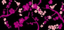 Free Floral Background Royalty Free Stock Image - 21139326