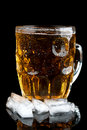 Free Cold Beer With Ice Stock Images - 21145444