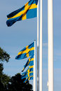Free Swedish Flags Stock Photography - 21146552