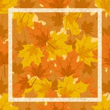 Free The Frame Of Autumn Leaves Royalty Free Stock Photography - 21140287