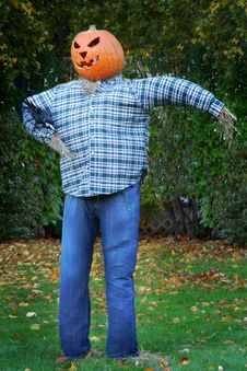 Free Scarecrow With Jack O  Lantern Head Stock Photography - 21140562