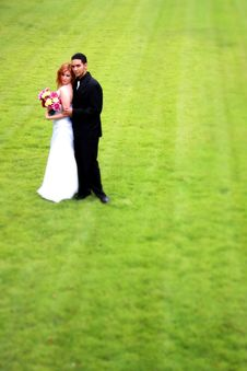 Free Bride And Groom On Grass Royalty Free Stock Image - 21141026