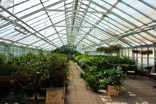 Free Inside A Greenhouse Full Of Plants And Flowers Stock Photos - 21141973