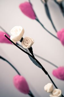 Free Flower Royalty Free Stock Photos - 21144778
