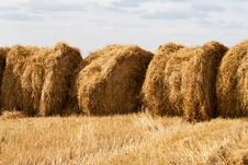 Free Several Stacks Of Hay Royalty Free Stock Image - 21145476
