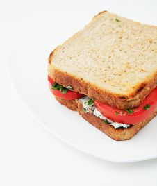 Free Sandwich With Tomatoes And Cheese Stock Photography - 21146322