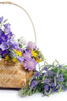 Free Beautiful Flowers In A Basket Royalty Free Stock Photo - 21149795